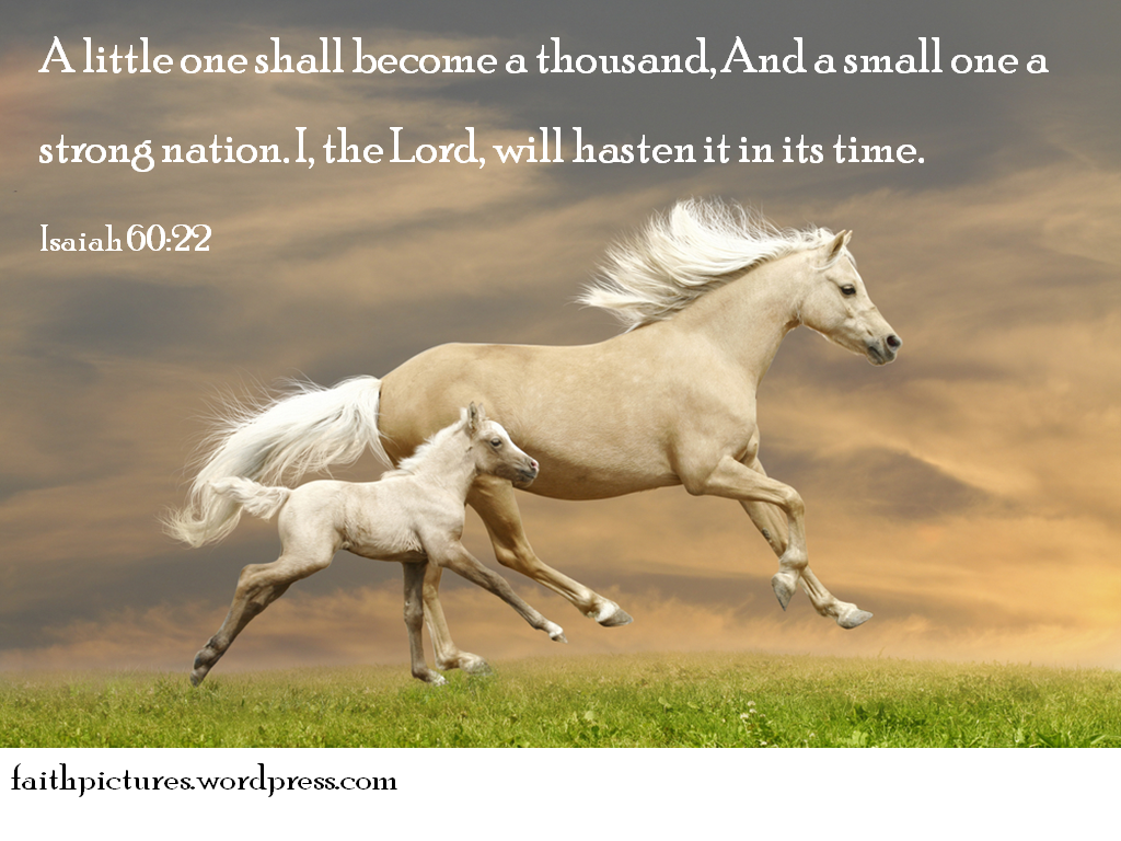 Simple Wallpaper Horse Bible Verse - 48  Picture_152118.png